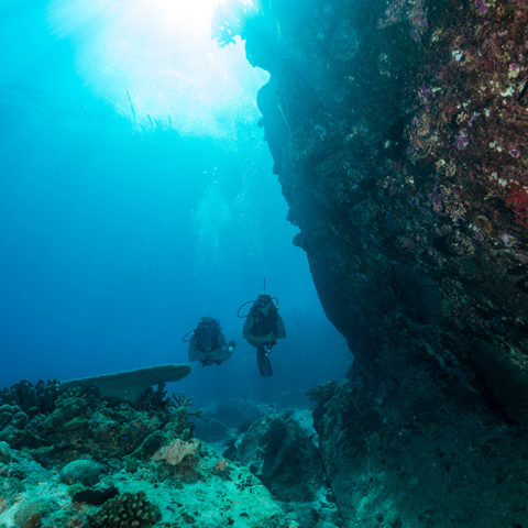 northisland-presidential-diving1