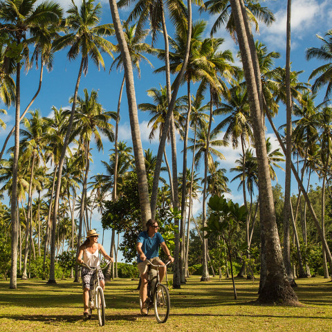 The North Island experience is all about freedom and choice, and your bicycles are your ticket to both