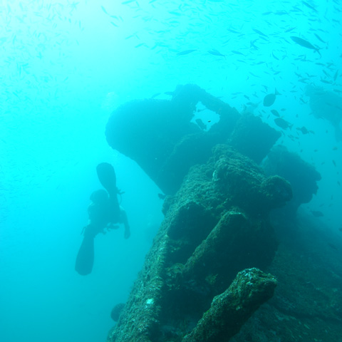 north-island-excursions-wreckdiving-2