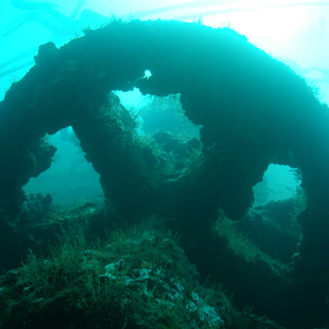 north-island-excursions-wreckdiving-3