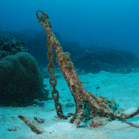 north-island-excursions-wreckdiving-4