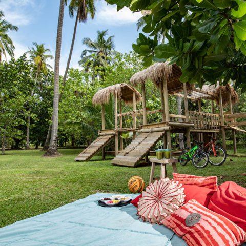 2019-north-island-kids-activities-jungle-gym